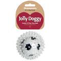 英国Rosewood 狗玩具 2合1多刺球 足球 38301